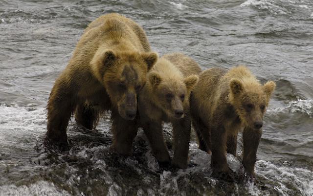 Image Source: National Parks Service